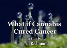 whatifcannacbiscuredcancer_8001