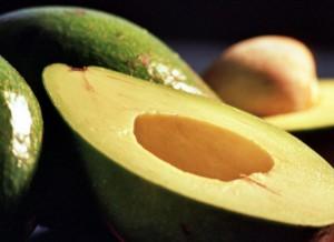 avocado_8208